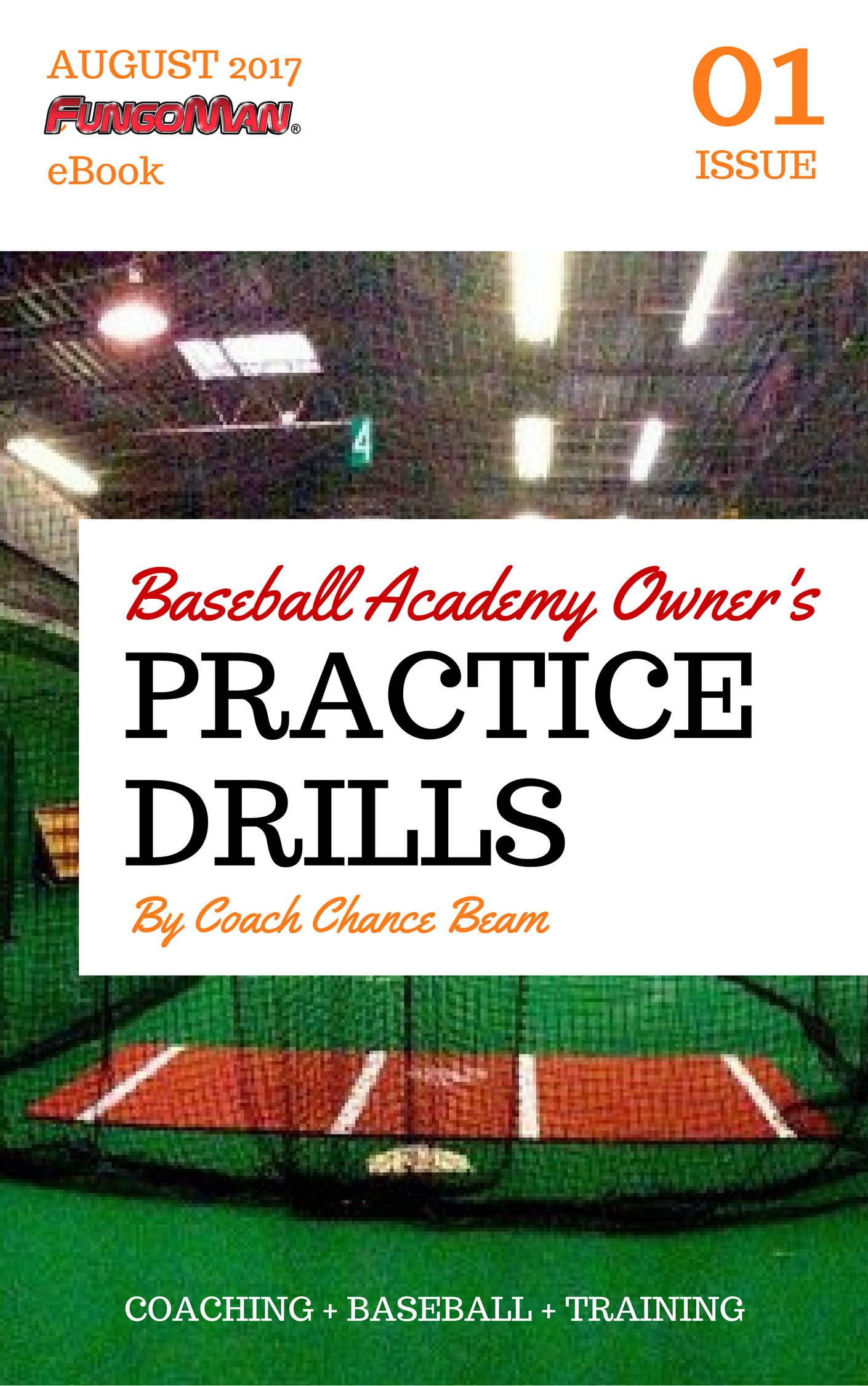 Baseball Drills To Double Your Reps in Practice pdf COVER (1).png